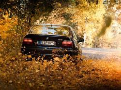 خودروی خود را برای فصل پاییز آماده کنید